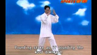 Xingyi  Chinese wushu instruction guide