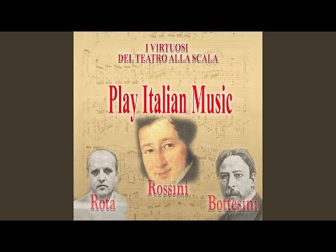 Concerto Per Archi: IV. Finale. Allegrissimo (Live Recording)