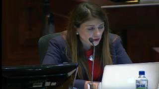 Sesión 462 del Pleno Continuación (06-07-2017)
