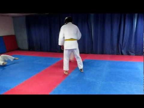 Entrenamiento De Judo