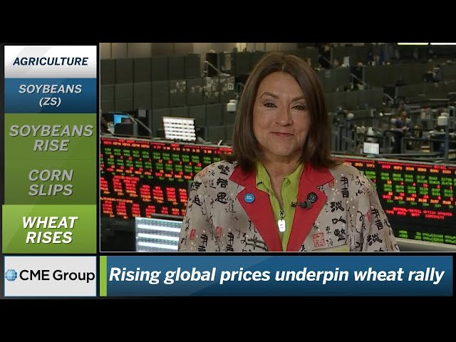 October 18 Grains Commentary: Virginia McGathey