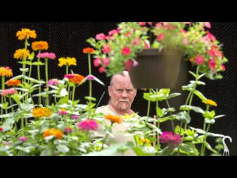 JCCC horticultural club holds annual plant sale
