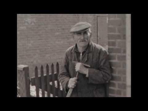 TVEllef: Bijzondere dorpsfilm Linne uit 1956
