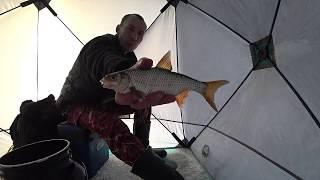 Зимняя рыбалка 2020 в январе Есть ли глухозимье ?