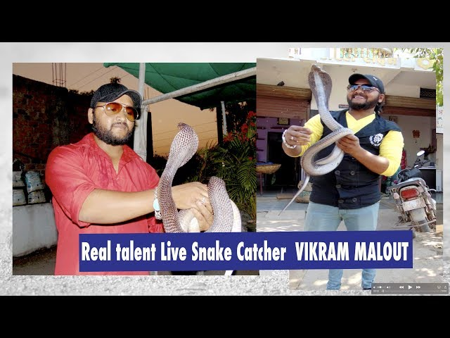 Real Talent || Vikram Malout A Snake Catcher |Interview with Gurdev Singh