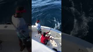 2020 Bisbee's East Cape Offshore | Carajos | Striped Marlin