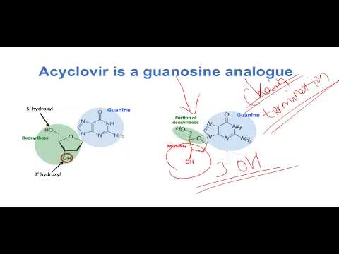 Mechanism of action of Acyclovir