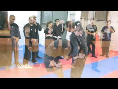 Shihan Michael Efstathiou - Chronicles of the Cyprus Bujinkan Dojo 1998-2017