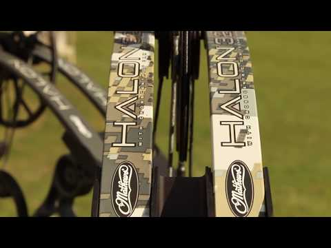 Mathews Halon 32 Review and Comparison - YouTube