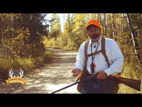 Ruffed Grouse Hunting In Manitoba - Manitoba Master Hunter Minute