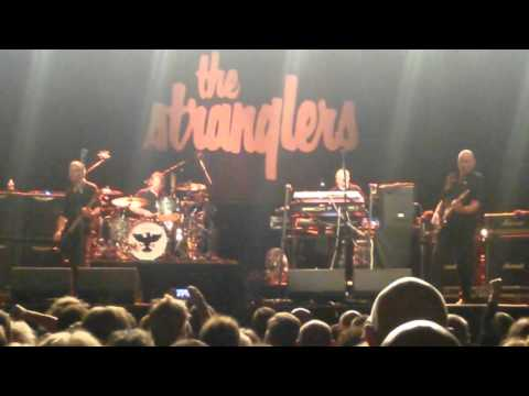The Stranglers Christchurch 15 April 2016 Christchurch 3