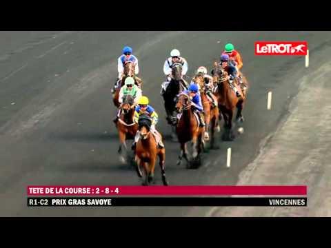 Vincennes   -   Prix Gras Savoye (Prix Paul Bastard) (GROUPE II)   -   Bilibili   -   28-02-2016