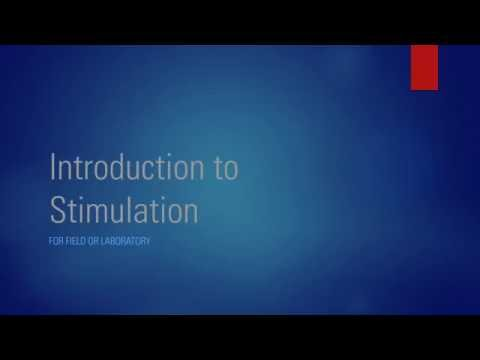 Introduction to Stimulation