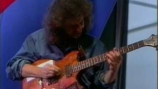 Pat Metheny Trio    Cantaloupe Island 1992