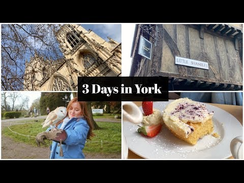 3 Days In York: Travel Vlog | Fashioneyesta
