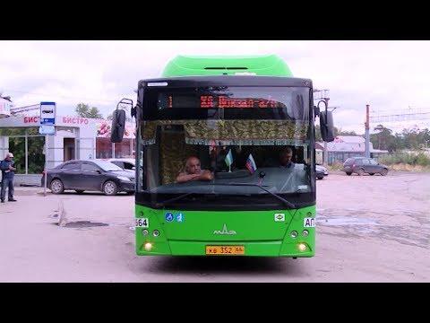 В ожидании автобусов