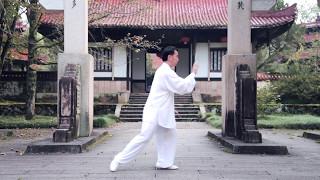 5 9 form hong wu tai chi master li bin