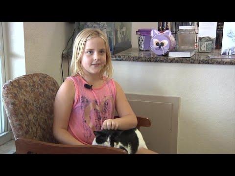 Courageous Cat Battles Rattlesnake to Save Girl's Life