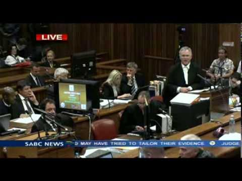 Oscar Pistorius Trial: Tuesday 4 March 2014, Session 3