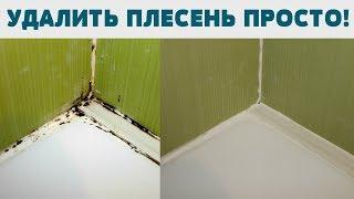 видео Как убрать плесень в ванной?