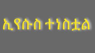 የይሁዳ አንበሳ ድል አድርጎ ተነሳ Yeyihuda Anbesa   ትዝታው ሳሙኤል Tizitaw Samuel MP3