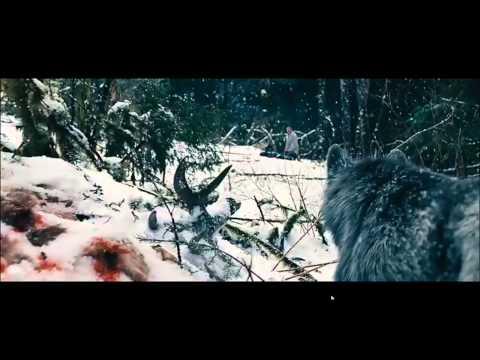 The Grey (Final scene)