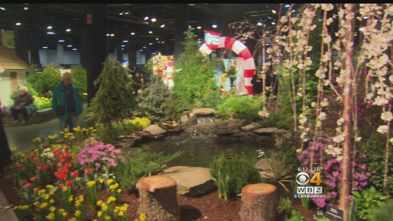 Spring Arrives At Boston Flower And Garden Show - YouTube