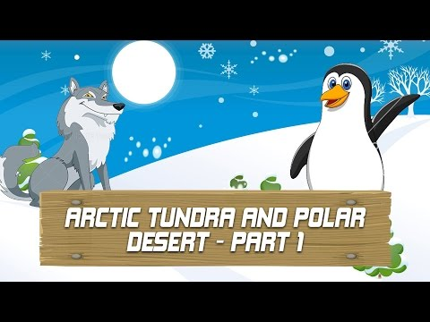 Arctic Tundra And Polar Desert - Amazing Strange Facts Blow Your Mind - Ep - 1 - Part 1
