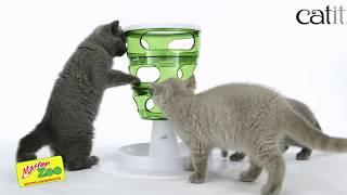 Игрушки Для Котиков (Часть Первая). Все О Домашних Животных