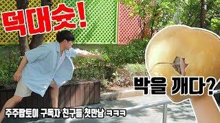 듀얼무타타로 박을 박살냈습니다!  (저 이제 주주팝입니다ㅋㅋㅋㅋ) [대문밖장난감]