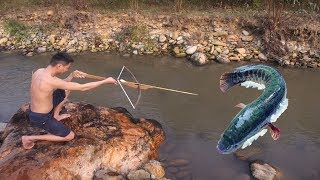Primitive technology - Catch big fish and cooking fish for lunch - Eating delicious