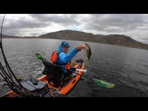 Lake Perris Jig Bite