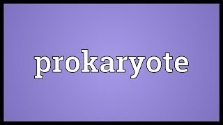 Prokaryote Meaning