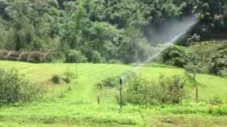 太陽能系統-自動灑水器