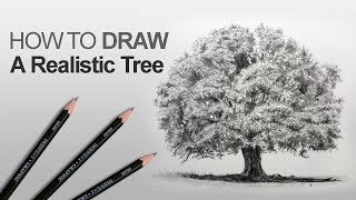 How to Draw a Tree (Realistic)(Learn how to draw a realistic tree using a structured approach.