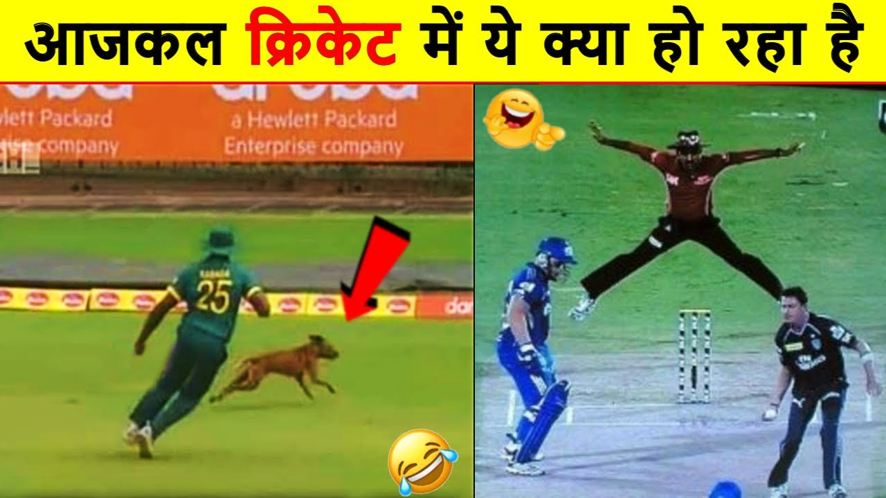 TOP 10 Funniest Moments In Cricket | IPL 2021 Funny Video. Most Funny fails in IPL 2021 | Pin Fact