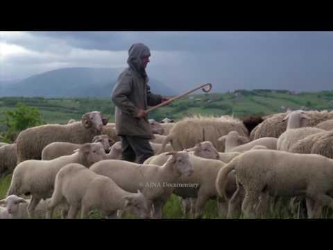 Albania trailer 2017