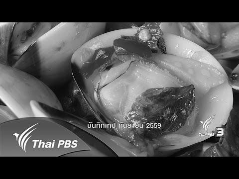 ตะลุยทั่วไทย : หอยกระปุก (17 พ.ย. 59)