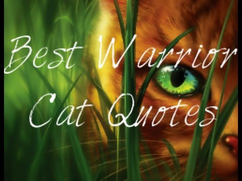 Warrior cats the game