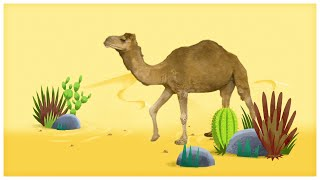 "Animal Songs: ""Walk Like a Camel,"" by StoryBots"