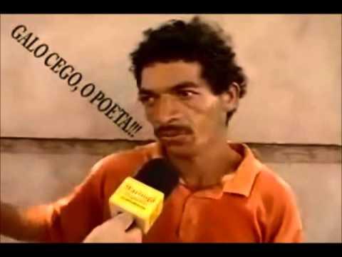 wats zapp 3 videos engracados