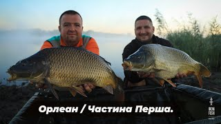 Турнір IRON FISH 6 Этап водойма Орлеан 1частина Телеканал Трофей