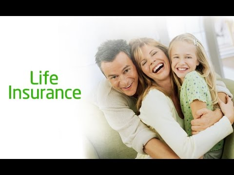 TOP 10 Best Whole Life Insurance Companies In The World 2017