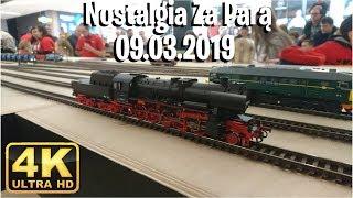 🚂 Nostalgia Za Parą 09.03.2019 (4K)