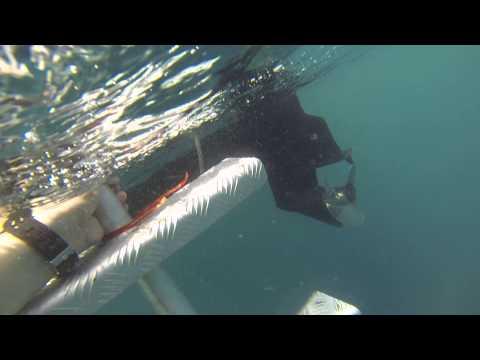 Fiji Dream House dive pt 3/3
