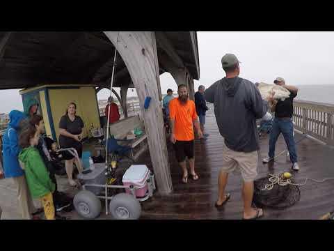 Pier Fishing Tybee Island