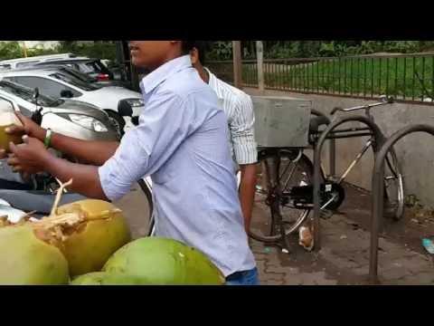 Coconut water service Bandra Mumbai Bombay