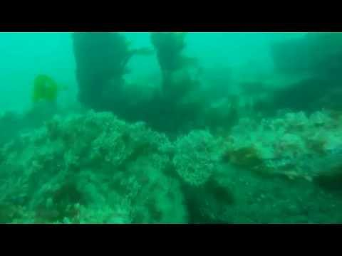 Poole Bay Artificial Reef