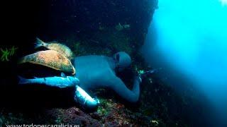 Pesca Submarina en los bajos de Baldayo - Documental Completo