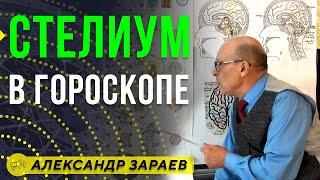 СТЕЛИУМ В ГОРОСКОПЕ / Школа Астрологии онлайн обучение 2019